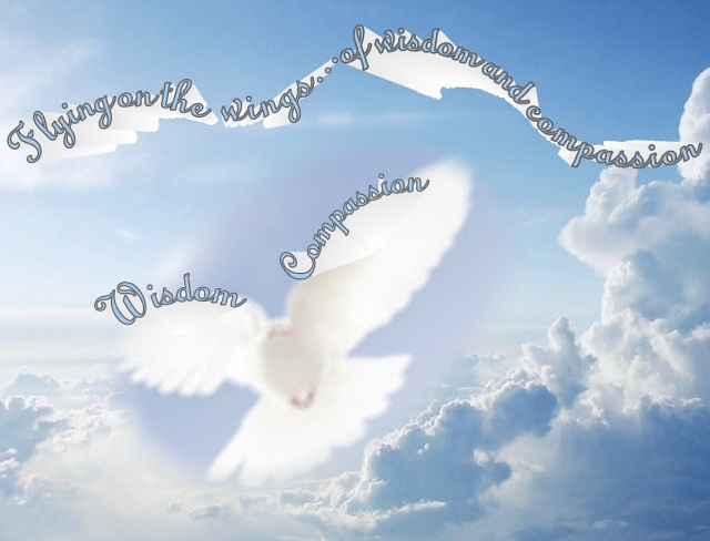 flying on the wings of wisdom and compassion