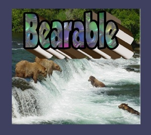"""Bearable""...it may be hard, but it is bearable"