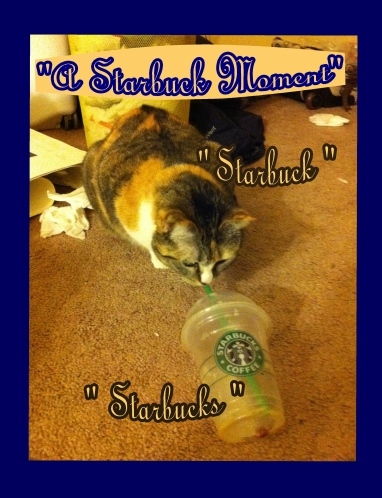 a starbuck moment