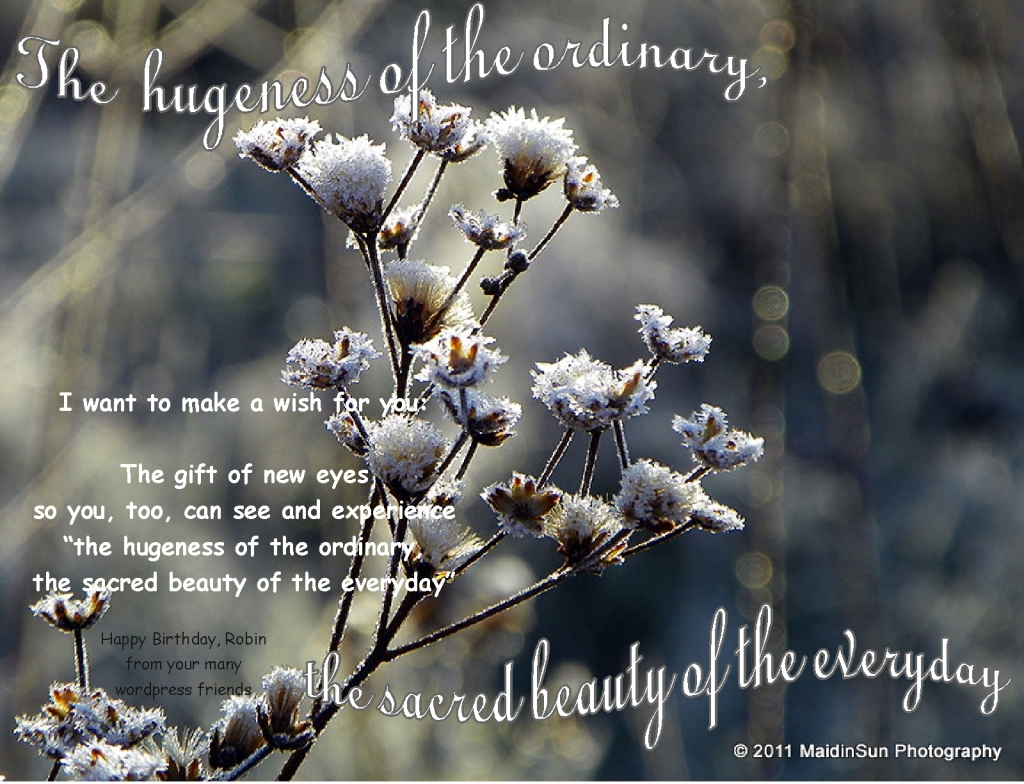 """ The sacred beauty of the everyday.... """