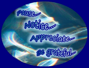 Pause...notice...appreciate....be grateful.....living with a warm heart