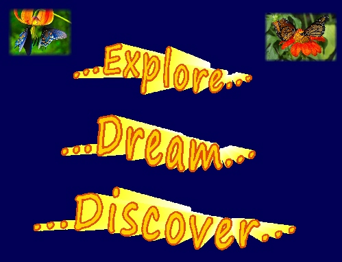 bevie and bo explore dream discover