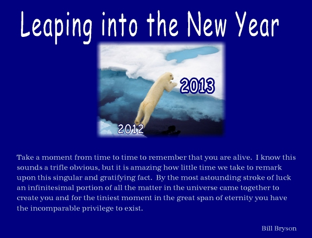 new year 2013 Bill Bryson privilege to exist