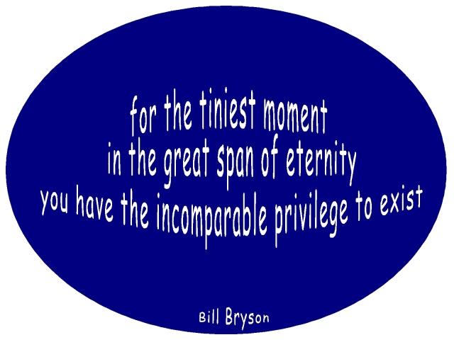 new year 2013 Bill Bryson quote great privilege