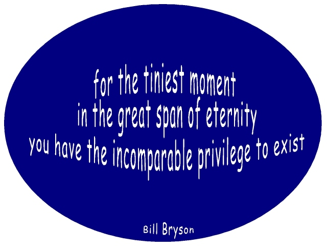 new year 2013 Bill Bryson quote great privilege