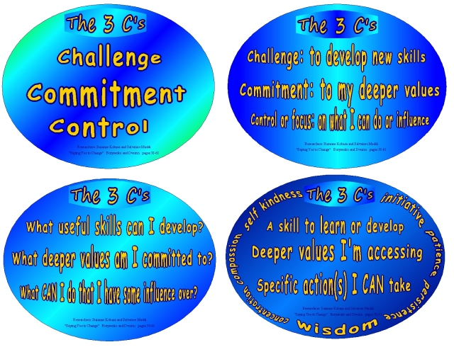 3 c's challenge commitment 4 small one varied