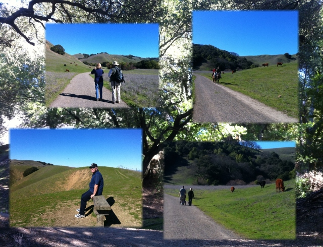 briones walk a few people
