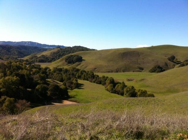 Briones hills looking toward Berkeley Hills