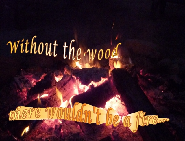 without the wood there wouldn't be a fire confusion to clarity