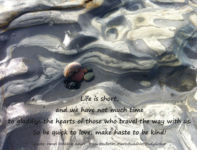 make haste to be kind, life is short