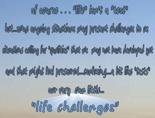 life really isn't a test...but there are challenges