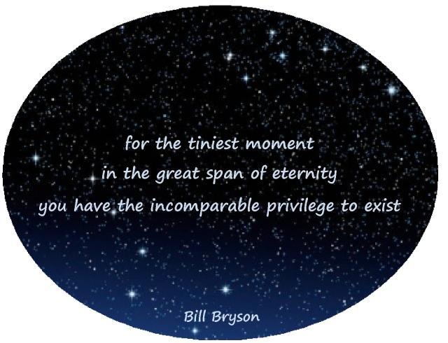 tiniest moment Bill Bryson appreciation
