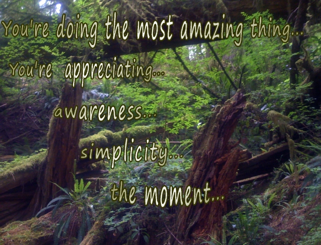 awareness in each moment