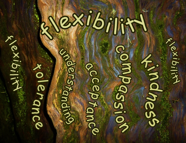 flexibility...tolerance, understanding, acceptance, compassion and kindness
