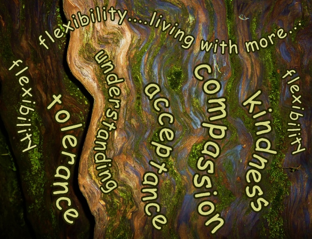 flexibility...living with more kindness and compassion