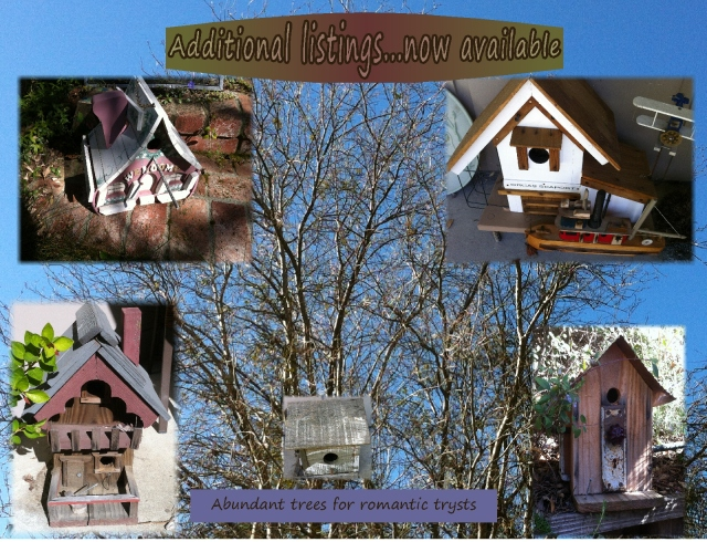 homes for sale birdhouses additional