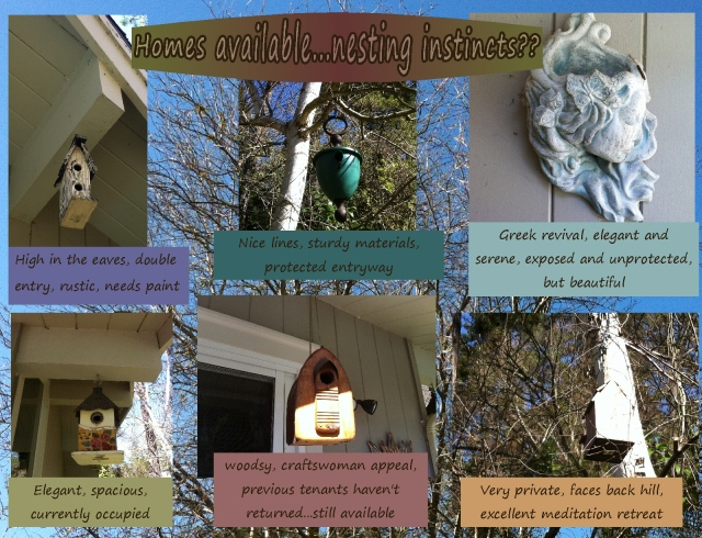 spring nesting instincts birdhouses available