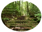 Irish Blessing Greeley Pond Trail