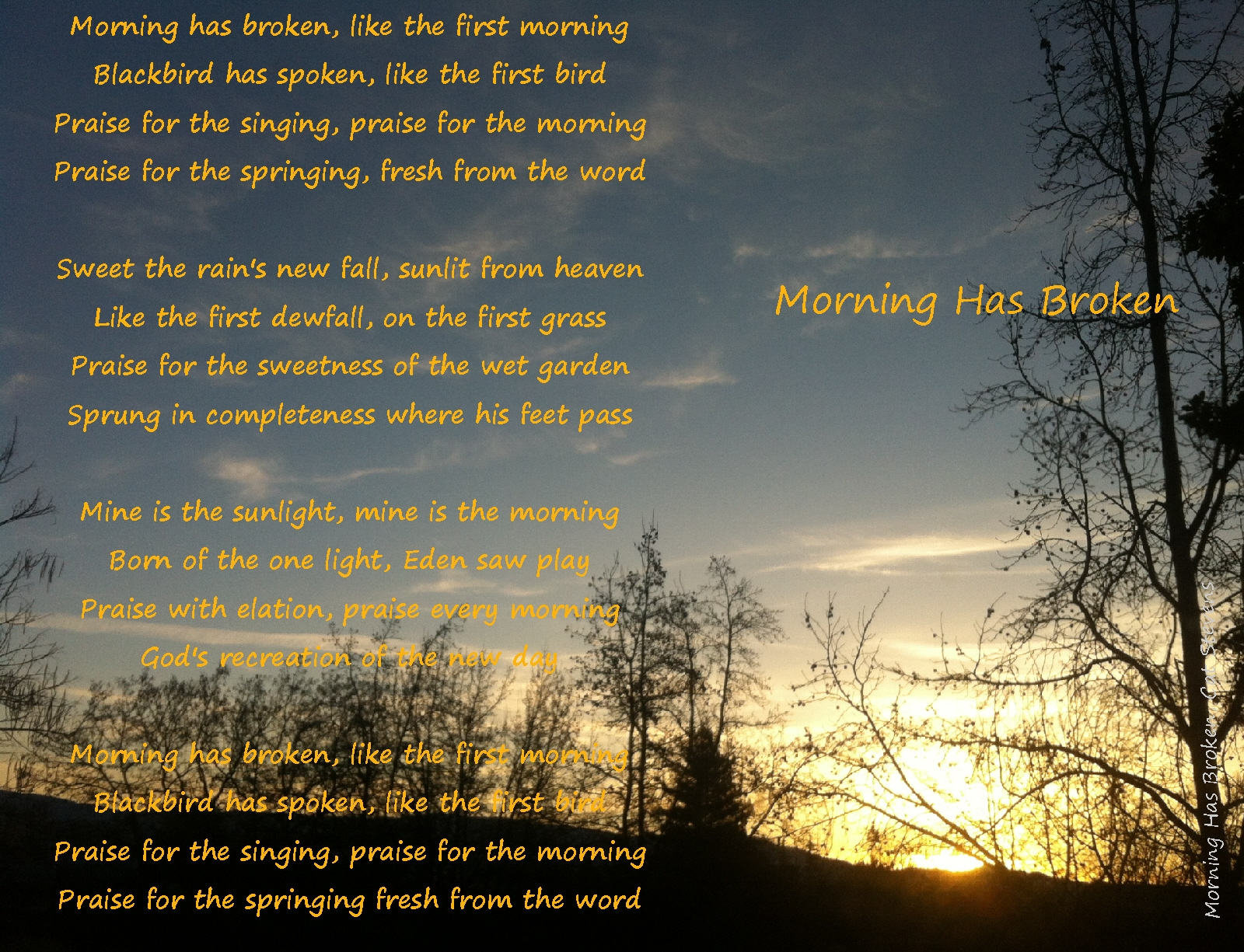 Morning has broken…. love and appreciation, as life hurries on ...