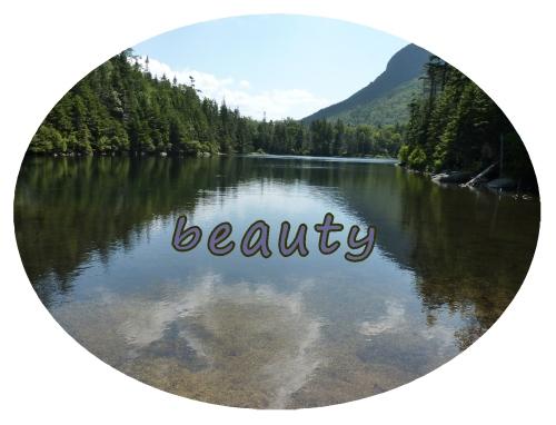 stillness a quiet mind simple beauty