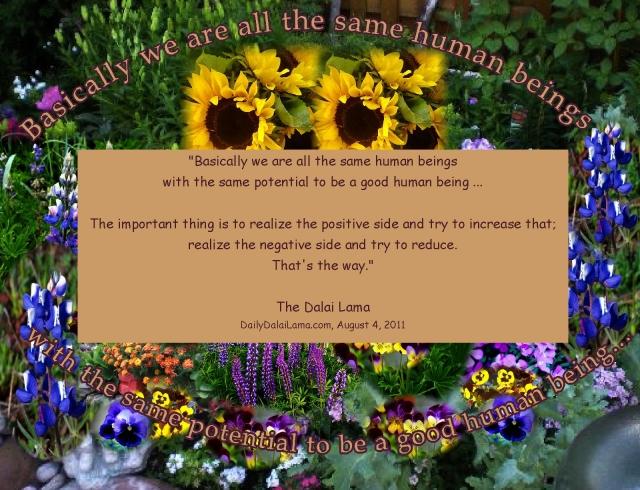 The Dalai Lama Plant Flowers, increase the positives, decrease the negatives