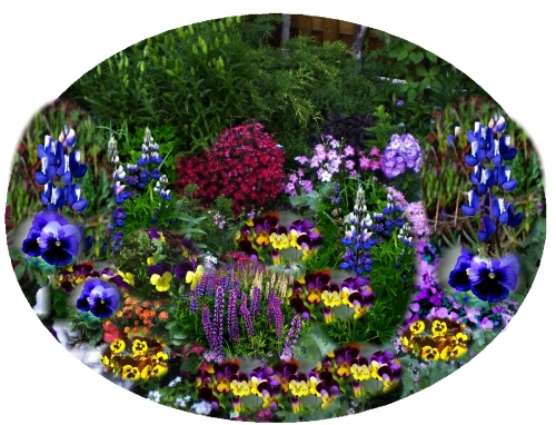Plant flowers, pull weeds...and imagined garden