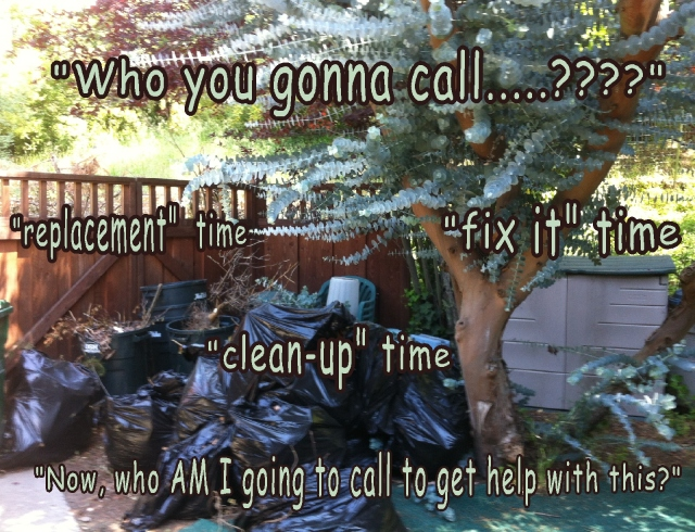 Springtime cleanup....who you gonna call?