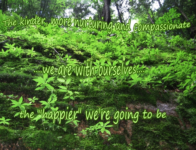 the kinder we are with ourselves, the happier we're going to be