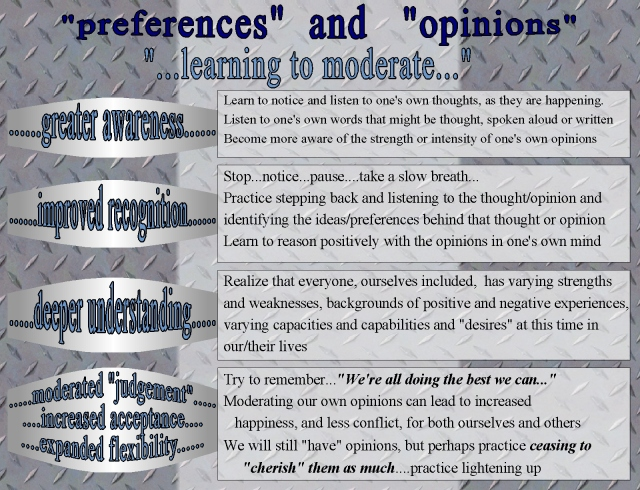 possible stategies for loosening up on opinions and preferences