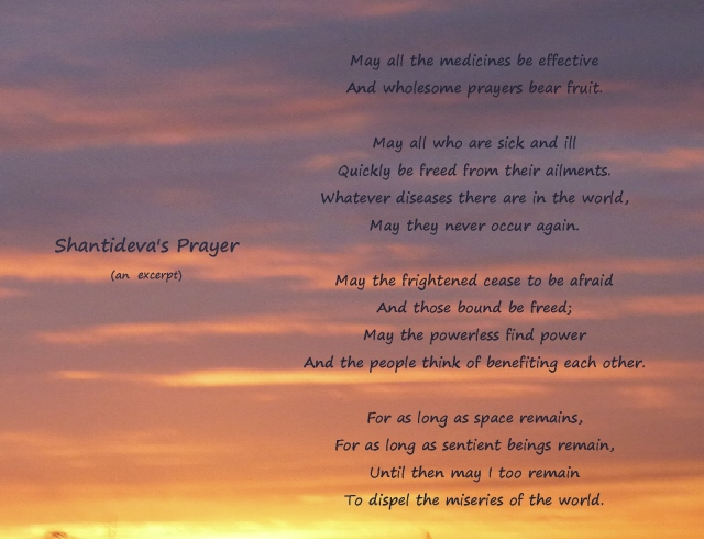 Shantideva's Prayer...another excerpt