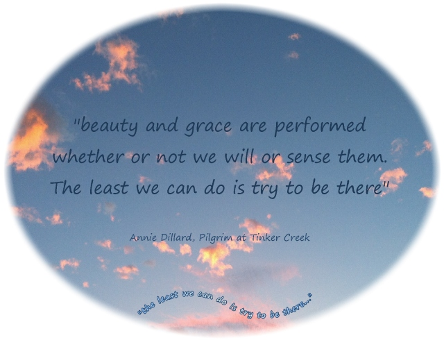 beauty and grace are performed  whether we will of sense them...the least we can do is try to be there  Annie Dillard