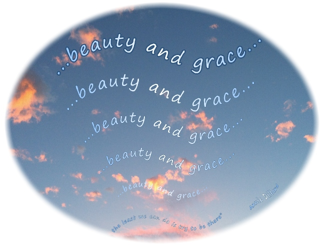 beauty and grace flowing in sky and life  Annie Dillard quote