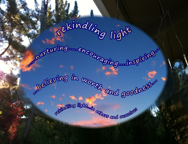 Albert Schweitzer quote  sometimes our light goes out  suncatcher