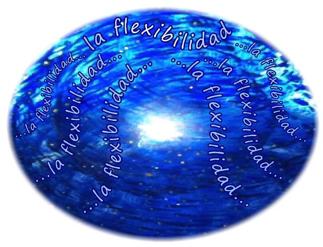 Spanish la flexiibilidad flexibility flexibility