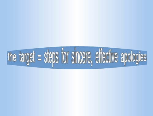 apology art of effective apologies title