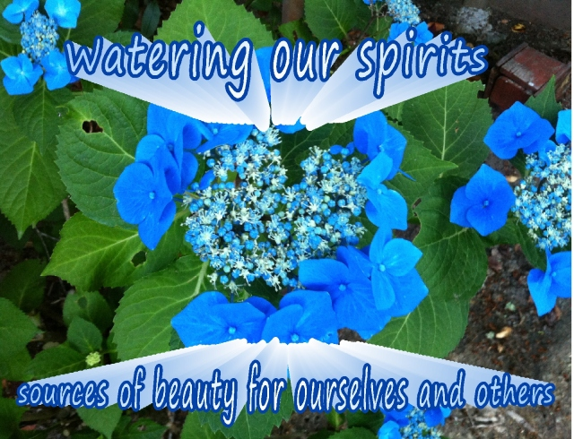 watering our spirits  sources of beauty for ourselves and others