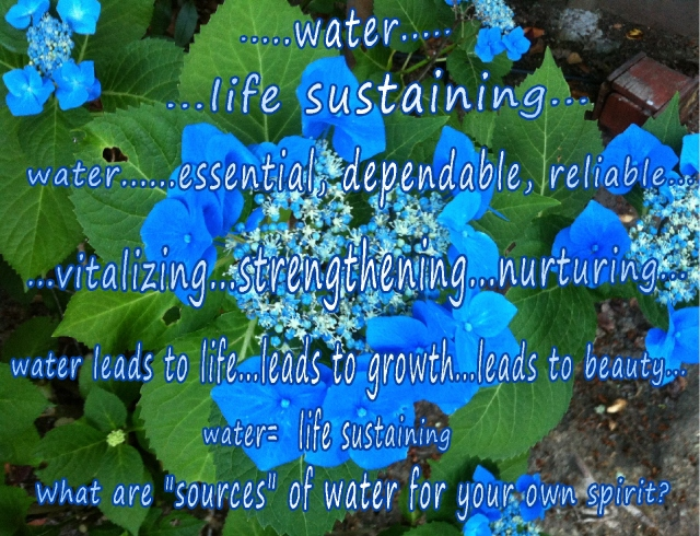 watering our spirits  life sustaining 3
