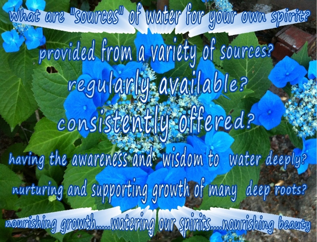 watering our spirits having a variety of sources Nurturing Thursdays