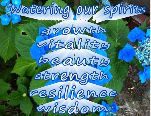 watering our spirits  leading to vitality and beauty  5