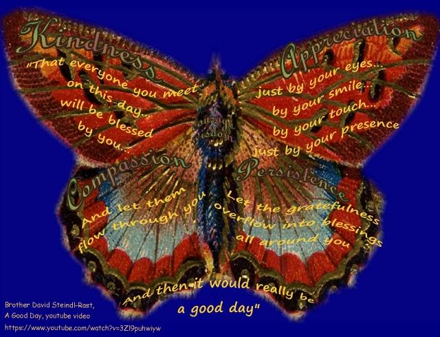 butterfly kindness gratefulness Br Steindl Rast