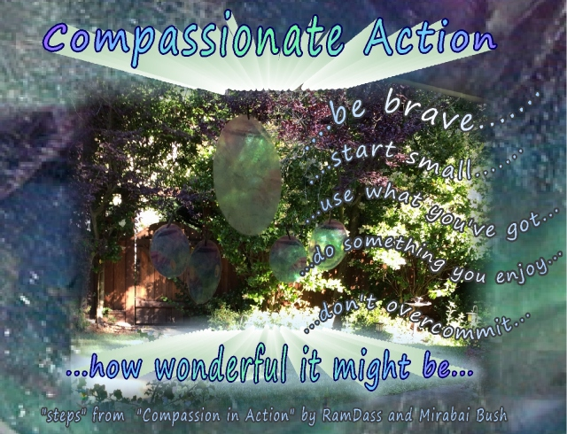 Compassionate Action and Service steps Ram Dass and Bush