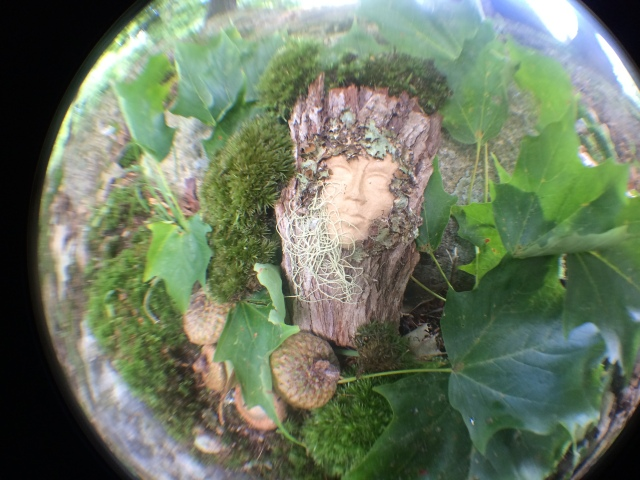 nurturing...becoming...entelechy...magic and mystery