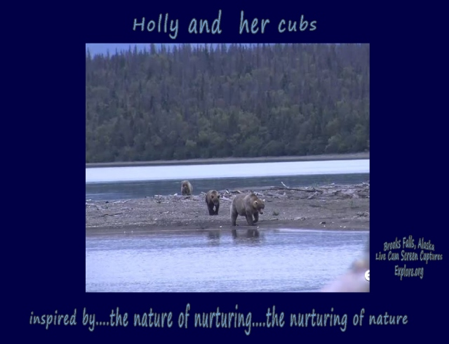 Brooks Falls Holly and her cubs...the nature of nurturing...the nurturing of nature