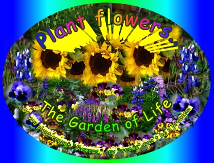 Plant Flowers, Pull Weeds, plant enough flowers and weeds won't be a problem