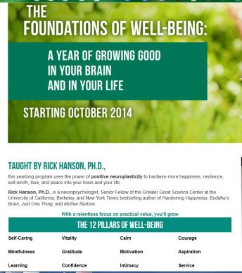 Rick Hanson Foundations of Well Being
