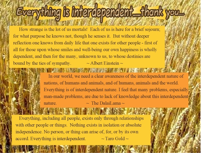 We thank the farmer interdependence