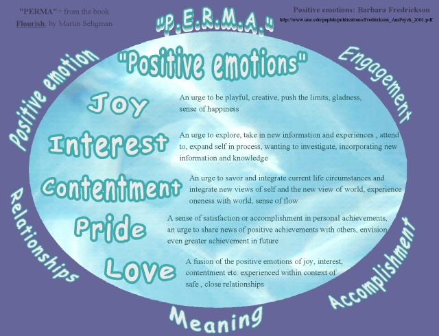 flourish perma and positive emotions 2