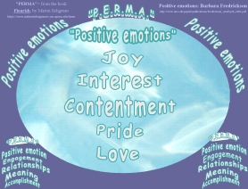 flourish perma and positive emotions combo