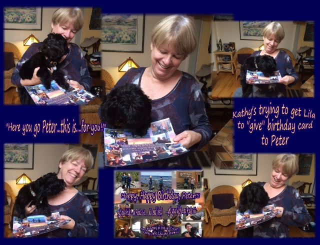 Peter birthday lila giving card bbb