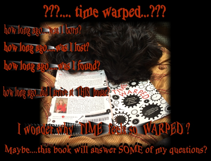 Time warped red 8